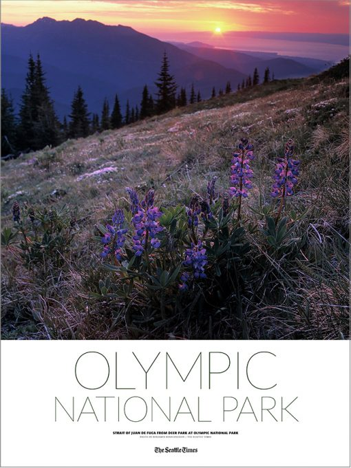 rp-Olympic_poster-2